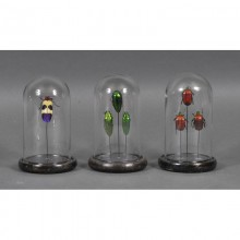 Mini Globes Insectes (Set of 3)